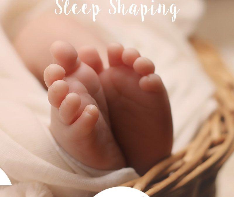 Protegido: Sleep Shaping – Una etapa para observar y formar.